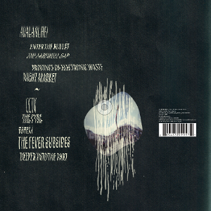 Visualizations album back cover